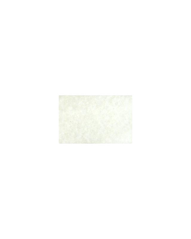 "Силикон Reins Fat G-Tail Grub 2"" 014 pearl white"