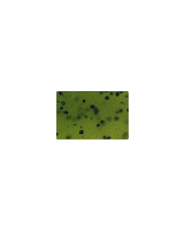 """Силикон Reins Fat G-Tail Grub 2"""" 001 watermelone seed"""