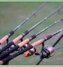 Реальное фото товара Воблер Duo Spearhead Ryuki 50SP by Миша Медведь Мишанский (3)