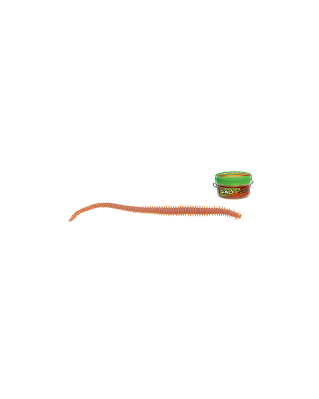 Силикон Berkley Gulp Alive Sandworm 10см GAPFSW4-NAT