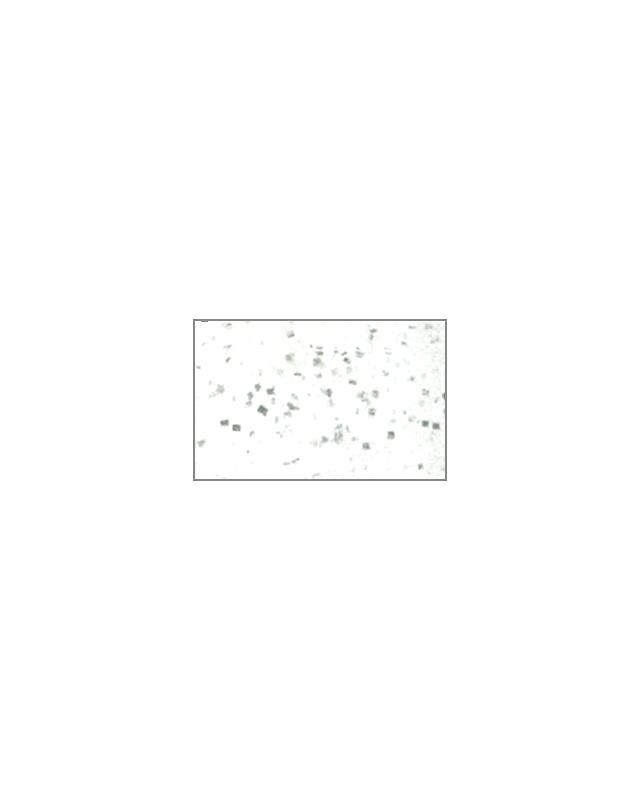 "Силикон Reins Bubbring Shad 2""(12)130 glow silver"