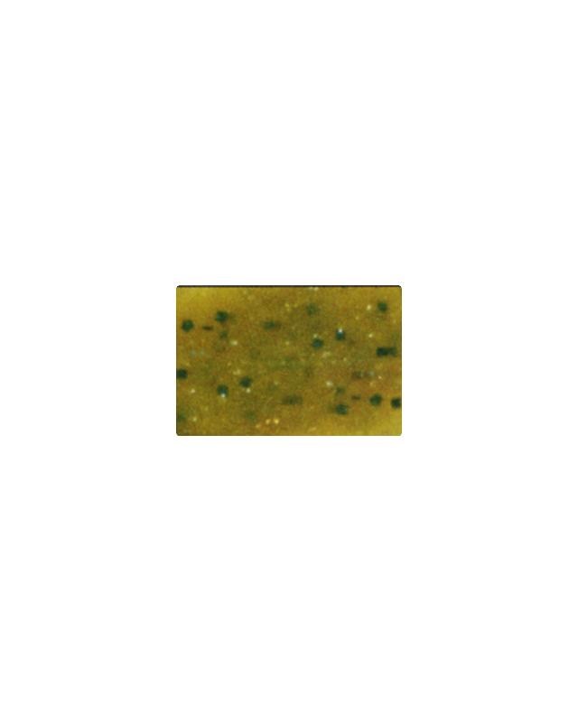 "Силікон Reins Kick Ringer 3""(15)002 green pumpkin"