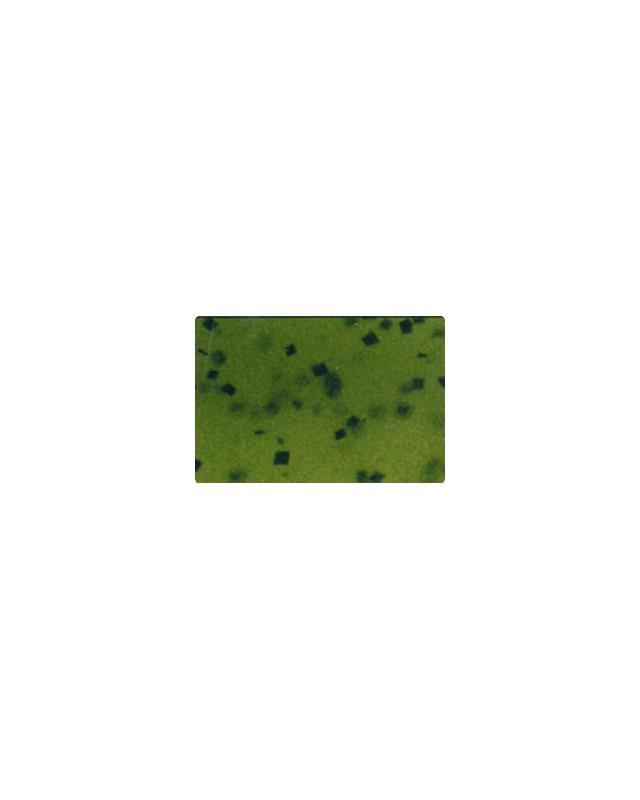 "Силикон Reins Bubbring Shad 2""(12)001 watermelon seed"